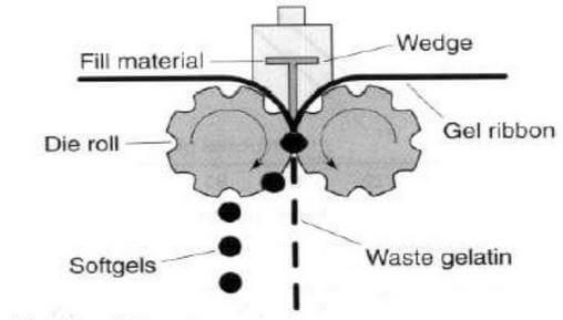 Softgel encapsulation process